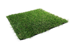 low cost grass