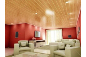 normal ceiling - PVC